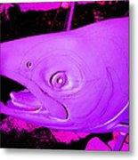 Purple Salmon Metal Print