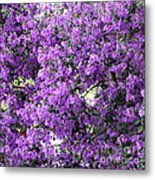 Purple Screen Square Metal Print