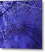 Purple Spiderweb Metal Print