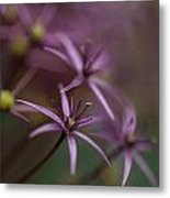 Purple Stars Metal Print