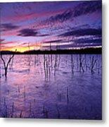 Purple Waters Metal Print