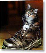 Puss In Boot Metal Print