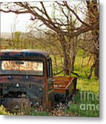 Put Out To Pasture2 Metal Print