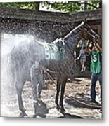 Quick Shower Before The Race Metal Print