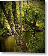 Quiet View Metal Print