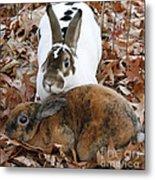 Rabbit Love Metal Print