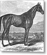 Racehorse, 1867 Metal Print