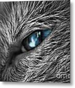 Raging Blue Metal Print