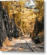 Rail Road Cut Metal Print