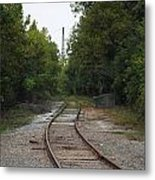 Rail To The Forest Metal Print