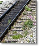 Railroad To Yukon Metal Print