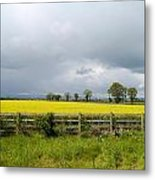Rain Clouds Over Canola Field Metal Print