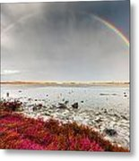 Rainbow By The Lake Metal Print