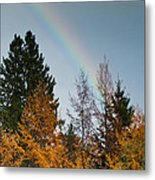 Rainbow Forest Metal Print