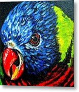 Rainbow Lorikeet Look Metal Print