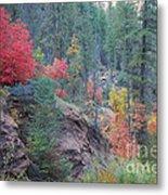 Rainbow Of The Season Metal Print by Heather Kirk