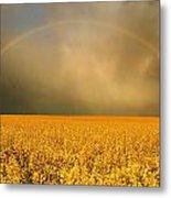 Rainbow Over Farmers Field Metal Print