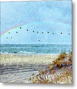 Rainbows And Wings II Metal Print