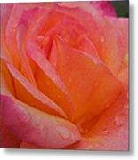 Raindrops On Roses Nine Metal Print