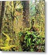 Rainforest Salad Bar Metal Print