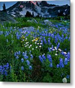 Rainier Wildflower Dawn Metal Print by Mike  Dawson