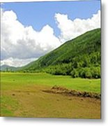 Ranching In The Boundary Metal Print