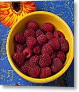Raspberries In Yellow Bowl Metal Print