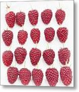 Raspberry Formation Metal Print