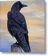 Raven Beauty Metal Print