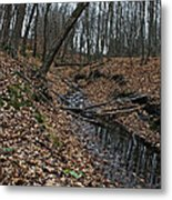 Ravine Creek Metal Print