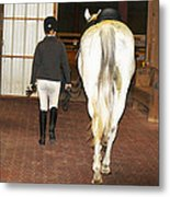 Ready For The Dressage Lesson Metal Print