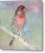 Ready To Sing My Song Metal Print