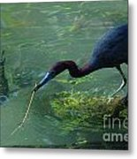 Really A Twig Metal Print