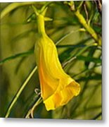 Really Yellow Flower Metal Print