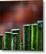 Red And Green Too Metal Print