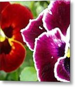 Red And Magenta Pansies Metal Print