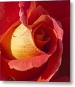 Red And Orange 2 Metal Print