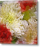 Red And White Mums Photoart Metal Print
