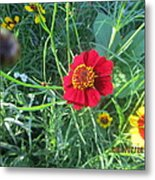 Red And Yellow Tiny Flowers Metal Print