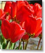 Red Art Spring Tulip Flowers Floral Metal Print