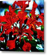 Red Beauty Metal Print