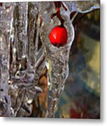 Red Berry In Icicle Metal Print