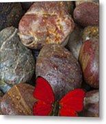 Red Butterfly On Rocks Metal Print