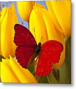 Red Butterful On Yellow Tulips Metal Print