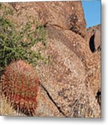Red Cactus Rock Metal Print