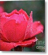 Red Crystal Petals Metal Print