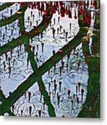 Red Crystal Refletcion Metal Print