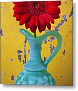 Red Daisy In Grape Vase Metal Print