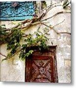 Red Door Blue Door Metal Print
