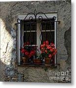 Red Geraniums In Window Metal Print